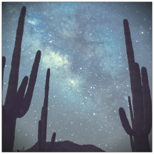 Wüste Milchstraße Kakteen